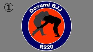 Oosumi Bjj R220