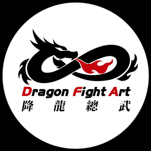 Dragon Fight Art Mma Center