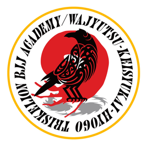 Triskelion Bjj Academy